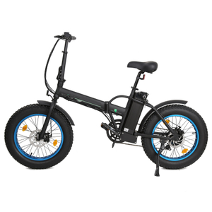 FATBIKE20 fat tire portable folding electric Bike