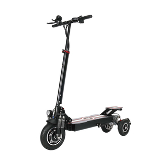 CF-T10-1 36/48V 800-1000W single motor 3 wheels electric scooter