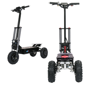 2020 most popular 11inch roadoff tires hydraulic brakes 60V31AH Pioneer of 3 Wheel Electric Scooter